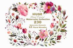 230 Watercolor floral elements By Molesko Studio