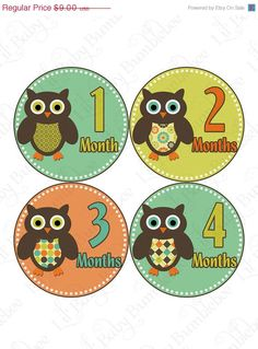 Monthly Baby Onesie by LittleBabyBumblebee