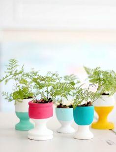 Colorful mini planters diy