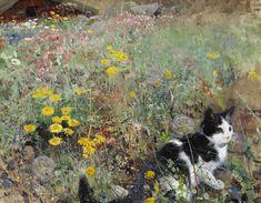 CyBeRGaTa - Cats, Memes, New Mexico : Photo
