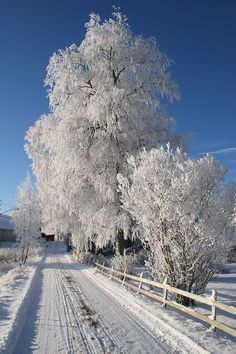 Norway E6 - Bing Bilder