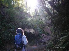 四角友里さんがおすすめ。都心から日帰りできる絶景ハイキングコース3選【首都圏編】 | ことりっぷ