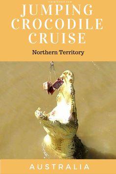 jumping crocodile cruise Northern Territory Jumping crocodile cruise