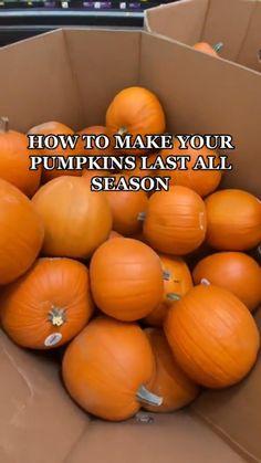 Holidays Halloween, Halloween Crafts, Scary Halloween, Halloween Party Snacks, Halloween Movies, Pumpkin Decorating, Porch Decorating, Halloween Bucket List, Halloween Pumpkins