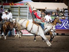 2015 Pasco County Fair Championship Rodeo Results