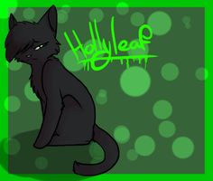 #10 Hollyleaf why:killed Ashfur whom I HATED!!!!! And was tied to her clan like a Queen to her kits death:Killed by Hawkfrost