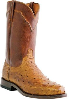 eaa4c1b5758 7 Best King Exotic Boots images in 2014 | Boots, One kings, There is ...