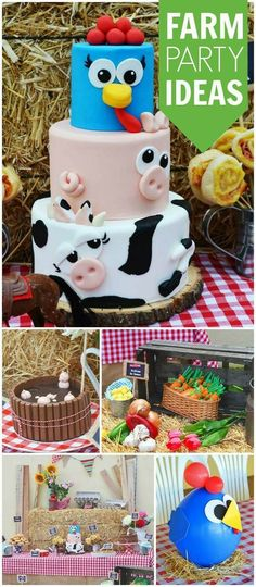Farm 1st bday theme
