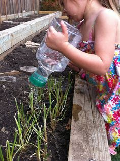 A Childhood List: 102) Recycled Bottle Watering Cans