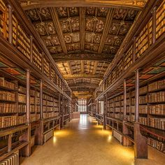 This Reading Room is one of the oldest in Europe. Built in Duke Humfrey's Library is the oldest reading room in the Bodleian Library at the University of Oxford. Photograph by DAVID ILIFF. Queens College Library, Queen's College, Oxford College, Oxford Library, Harry Potter Filming Locations, Hogwarts Library, Old Libraries, Public Libraries, Rio De Janeiro