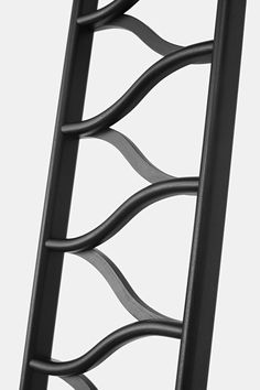 ladder by clemens auer. photo (c) leonhard hilzensauer
