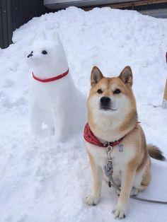 雪の日の兄弟