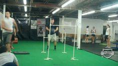 Dynamic Effort Lower Body Workout