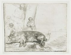 Rembrandt's Pets-Collected works of Glauce - All Rijksstudio's - Rijksstudio - Rijksmuseum Rembrandt Etchings, Rembrandt Drawings, Pig Art, Baroque Art, Dutch Golden Age, Architectural Prints, Dutch Painters, Gravure, Les Oeuvres