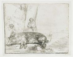Rembrandt's Pets-Collected works of Glauce - All Rijksstudio's - Rijksstudio - Rijksmuseum Rembrandt Etchings, Rembrandt Drawings, Leiden, Pig Art, Dutch Golden Age, Baroque Art, Architectural Prints, Dutch Painters, Gravure