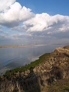 A view down the Medway from the banks of the Riverside Country park by Simon Bolton UK, via Flickr