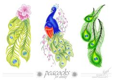 Peacock Tattoo Designs | commish - peacock tattoo by wynnter89 on deviantART