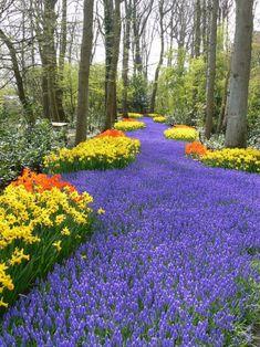 15 of the World's Most Amazing Gardens Keukenhof Gardens Netherlands