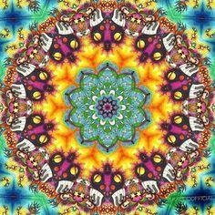 Musical Universe  #kaleidofficial  #kaleidoscope #kaleidoscopes #kaleidoscopic #mandala #mandalaart #symmetry #symmetric #zentangle #zentangles #abstract #abstractart #drawing #colorful #digitalart #digitalpainting #visualart #visualdesign #mirrorlab #thegraphicspr0ject  #fa_hypnotic  #psychedelic #psychedelicart #trippy #trippyart #pattern #modernart #sharingart #meditation #art_sanity