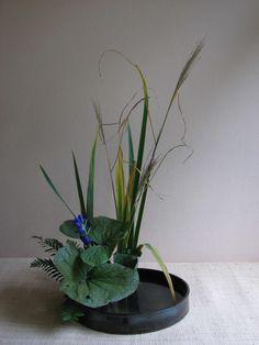Ikebana Ohara Le Mans - Présentation de compositions ikebana réalisées par les élèves du groupe Ikebana Ohara du Mans.