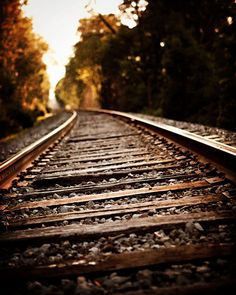 Autumn Landscape Photography, Train Picture, Train Tracks Landscape, Fall Decor, Copper Brown Gold Sepia, Art for Men, Boys Room Art.