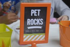 Paint a Pet Rock at a Nerd Party #nerdparty #activities