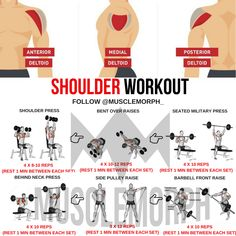 SHOULDER WORKOUT DELTOID EXERCISES GYM BODYBUILDING MUSCLEMORPH FITNESS