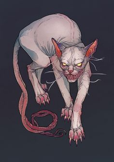 Goblin cat by MadLittleClown.deviantart.com on @DeviantArt