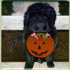 Newfoundland Dog Trick Or Treat Art Tile By by caninepainter, $20.00