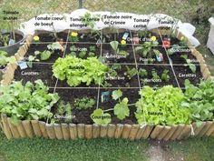 réussir son potager en carré - Recherche Google Farm Gardens, Outdoor Gardens, Sustainable Farming, Backyard Sheds, Square Foot Gardening, Love Garden, Tips & Tricks, Flower Farm, Edible Garden