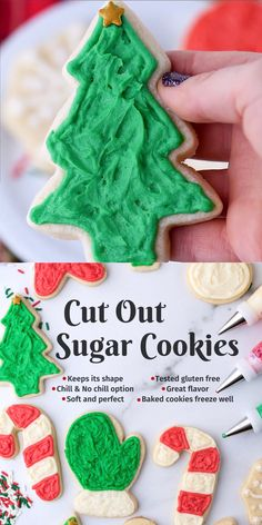 Cut out sugar cookies are perfect for the holidays! This recipe has ALL the options - a no chill option, a gluten free o Sugar Cookie Recipe Easy, Gluten Free Sugar Cookies, Sugar Cookie Icing, Easy Sugar Cookies, Christmas Sugar Cookies, Cookies For Kids, Yummy Cookies, Holiday Cookies, Christmas Desserts