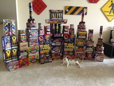 This cat is happy about his owner's fireworks stash!