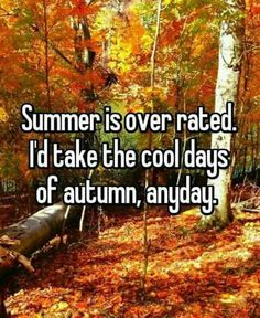 Summer is over rated. I'd take the cool days of Autumn anyday. Seasons Of The Year, Best Seasons, Halloween Look, Halloween Makeup, Halloween Magic, Vintage Halloween, Halloween Ideas, Halloween Decorations, Lexa Y Clarke