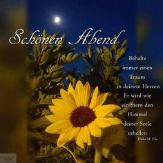 Good Night, Sunflowers, Good Night Love Images, Nighty Night, Good Night Wishes