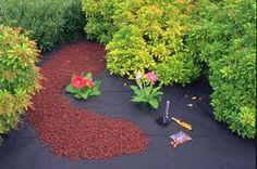 1000 Images About Yard On Pinterest Mulches Garden