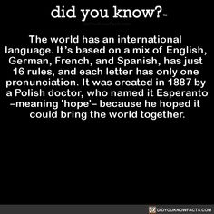 the-world-has-an-international-language-its