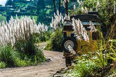 Road Travel in Peru, Part 2 –Paracas, Lima, Cordillera Blanca, Huanchaco, Cajamarca - Landcruising Adventure - On the Road, North Peru (©photocoen)