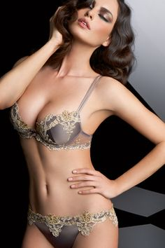 Passion Amoureuse Collection Push-up Bra - Lise Charmel ( Patterns Gold  Gray Satin Lace Full cup Push-up Bras) fdaeabb22