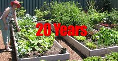 "It has taken 20 years to learn the keys and 5 secrets to making a garden almost ""no work."" Over at the eartheasy.com blog they share in detail HOW 5 strategies they have learned over 2 decades now enables them to ""greatly increase our garden yield, while requiring less time and less... #spr #sum"