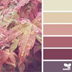 SnapWidget | designseeds's Instagram profile on SnapWidget