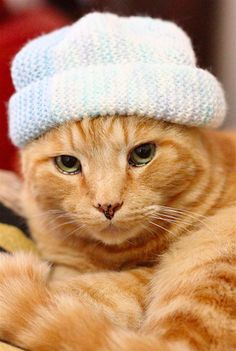 """""""The '90s called, and even then this beanie was out of date."""" 