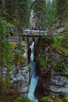 The scenery of Maligne Canyon at Jasper National Park in Alberta, Canada is just beautiful. After the waterfall, the trail leads to the beautiful Maligne Canyon. Canada National Parks, Banff National Park, Banff Canada, Alberta Canada, Jasper Alberta, Ottawa, Dream Vacations, Vacation Spots, Places To Travel