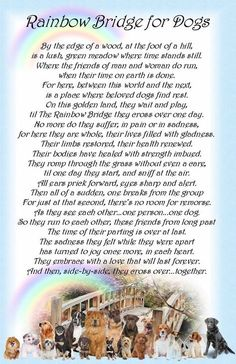 rainbow bridge pet poem printable - Google Search