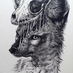 Les animaux libèrent leur squelette dans des dessins de Paul Jackson  Dessein de dessin
