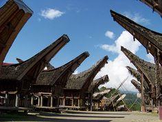 Tongkonan House, Toraja - Indonesia