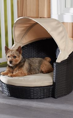 Protect your pet from the sun and harsh UV rays with the Arbor Canopy Bed.