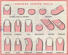 From the Standard Textbook of Cosmetology, 1967. Illustrations by Warren Meek.