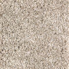 Stainmaster Essentials Bronson Terrain Textured Indoor