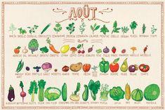 Le calendrier des fruits & légumes d'août