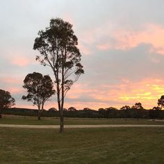 Another gorgeous sunset tonight. #ruralnsw #rural #weather #sunsets #ruralsunsets